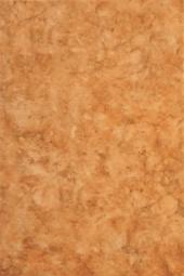 Плитка для стен ВКЗ Алтай Низ оранжевый 20x30