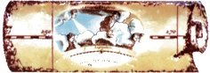 Бордюр Сокол Остров сокровищ орнамент матовый 622 7х20