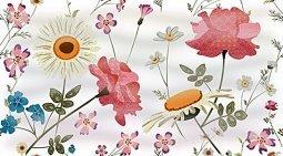 Декор Ceradim Floret Dec Floret Panno A 25x45