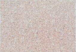 Плитка для стен Уралкерамика Флоренция ПО7ФО005 36,4x24,9