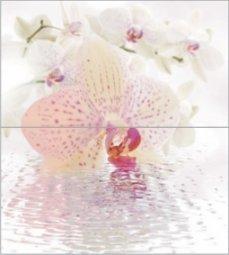Панно Ceradim Orchid Dec Orchid Panno 50x45