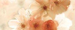 Декор Ceradim Manzano Dec Manzano Panno B 20x50