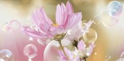 Декор Нефрит-керамика Эльза 04-01-1-10-04-85-165-1 50x25 Розовый